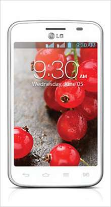 Whatsapp on LG Optimus L4II Dual E445