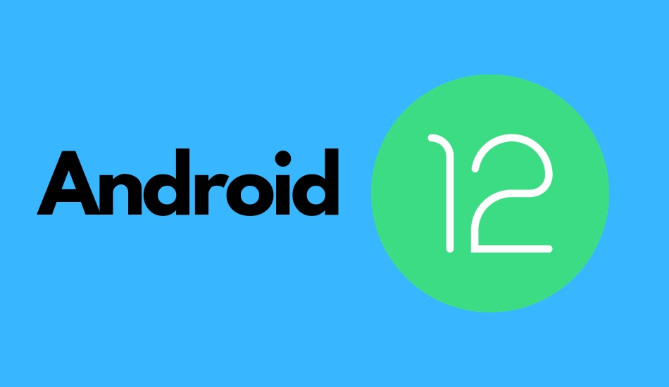 Android 12 Developer Preview 1 released for Pixel devices