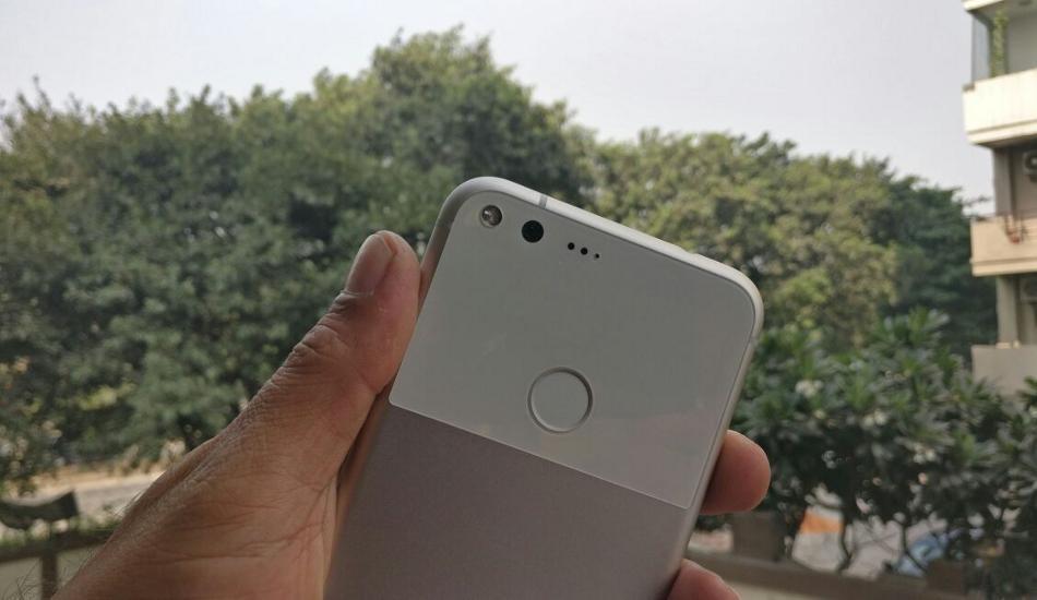 Google Pixel XL camera samples